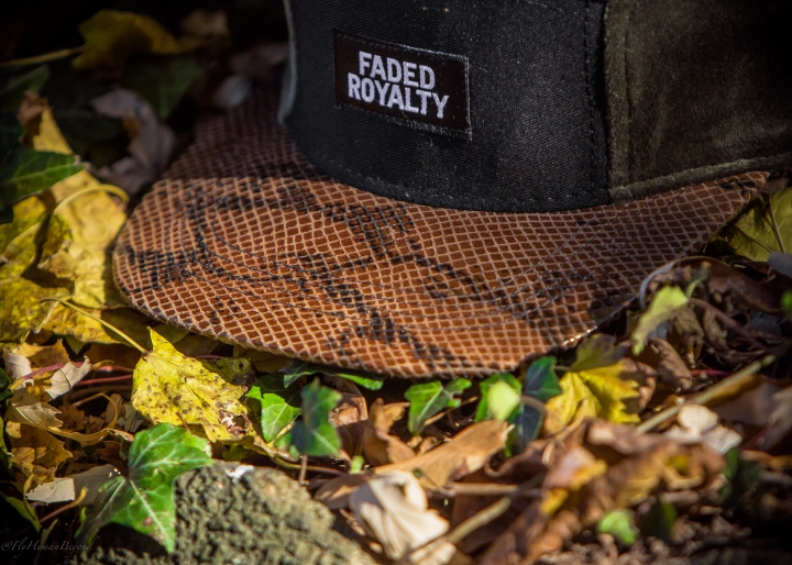 FADED ROYALTY-20