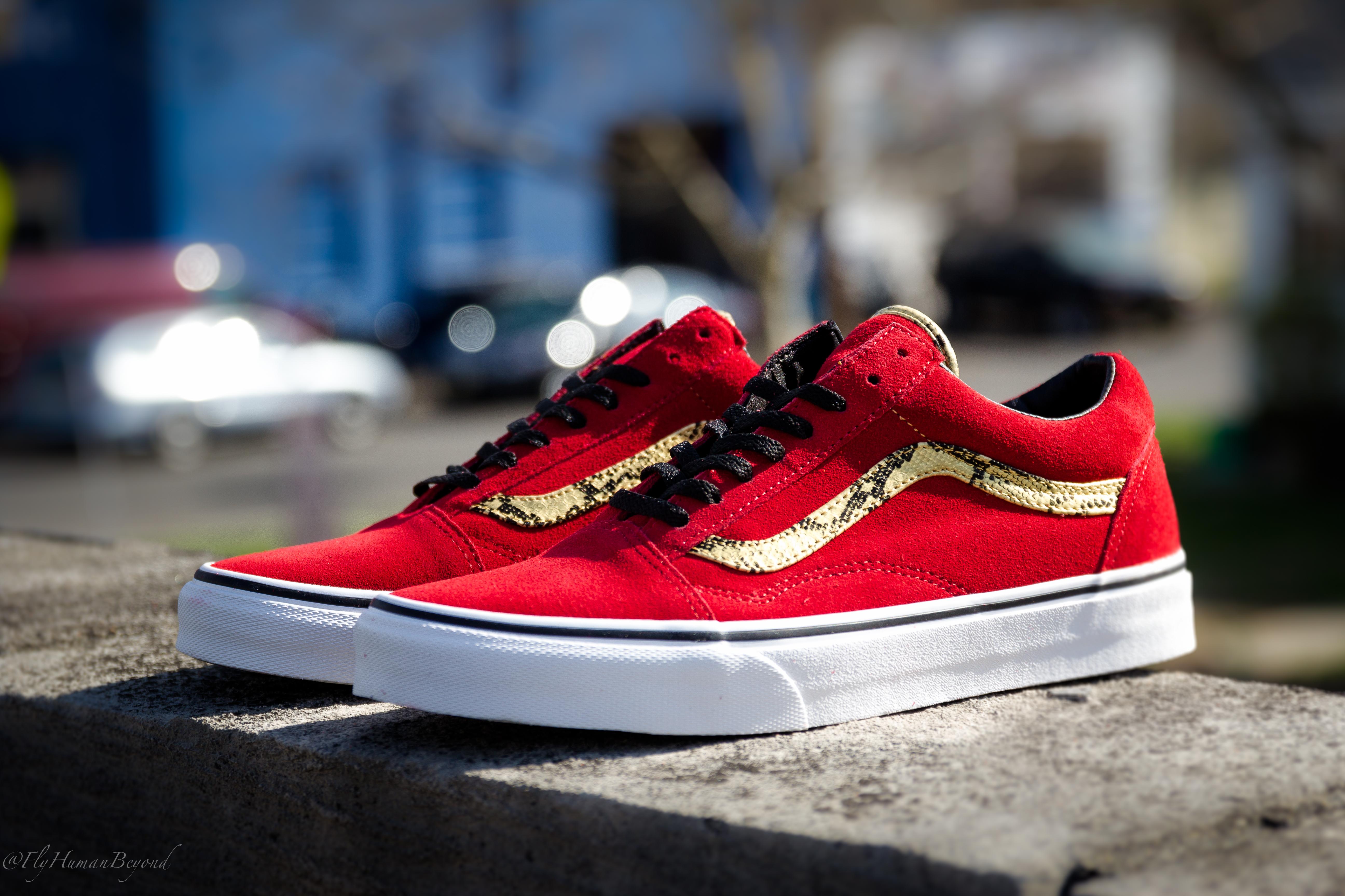 Vans Vieux Serpent Skool Rouge / Or pPDNIRlM