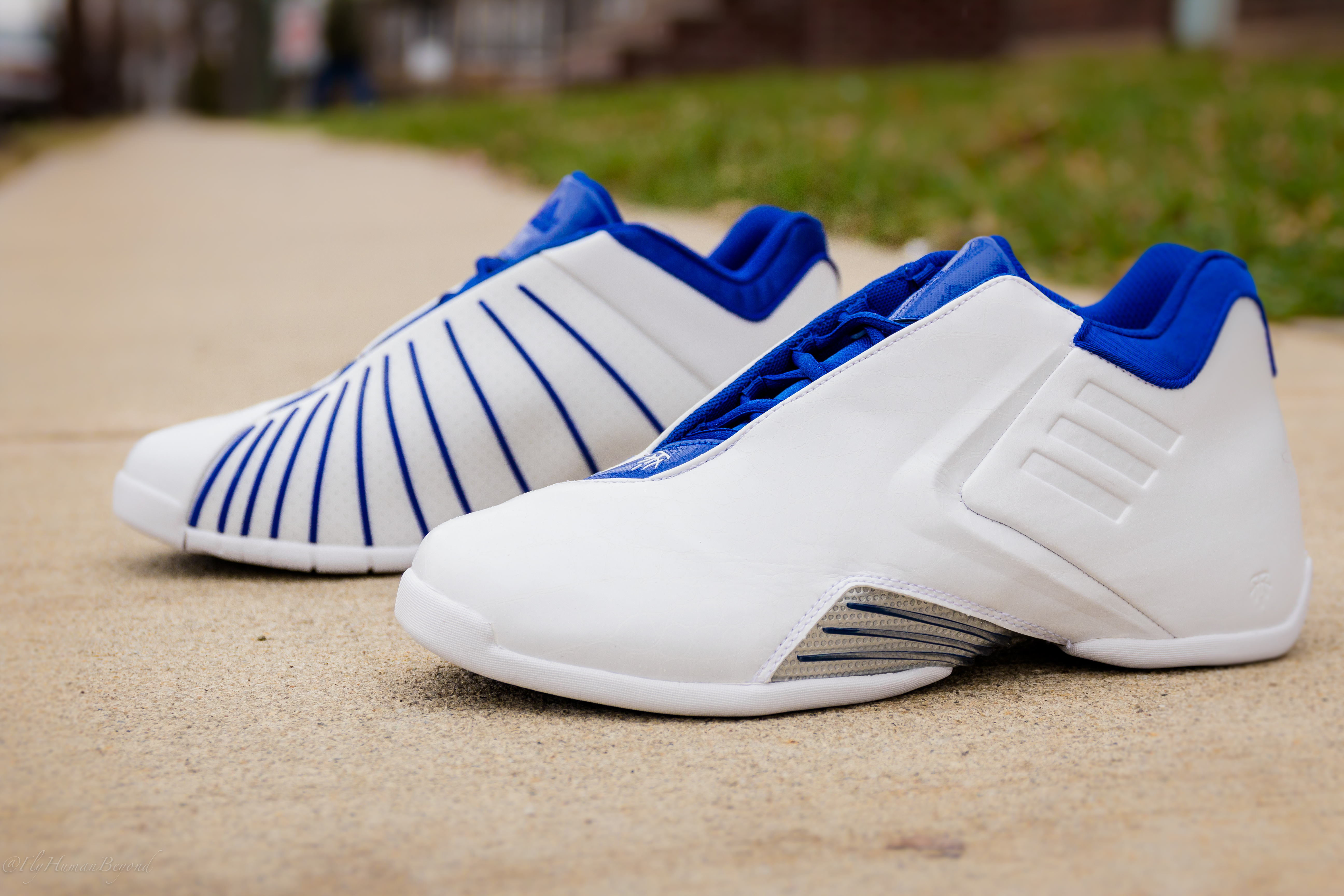 Buy Basketball Adidas shoes 2000 picture trends