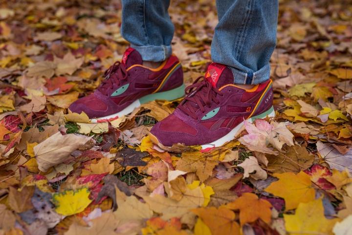 Packer-Reebok-LX-8500-Four-Seasons-Autumn-0