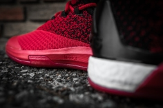 Adidas Crazylight Boost 2.5 Low Harden red-black-8