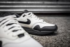 Nike Air Max 1 Premium 875844 100-12