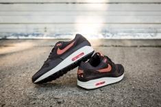 Nike Air Max 1 Premium 875844 202-9