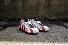 Nike Air DT Max '96 316408 161-3